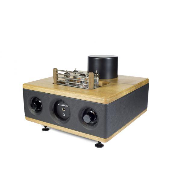 Auris Audio HA2 SE
